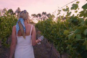 Wandering through the Vineyard - Vale Creek Wines   Bathurst Vignerons Association, Australia